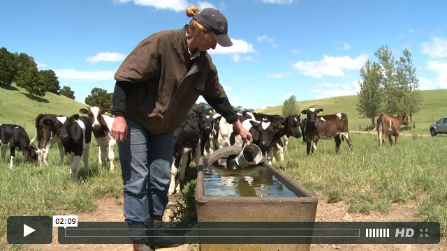 BioAg - Dairy
